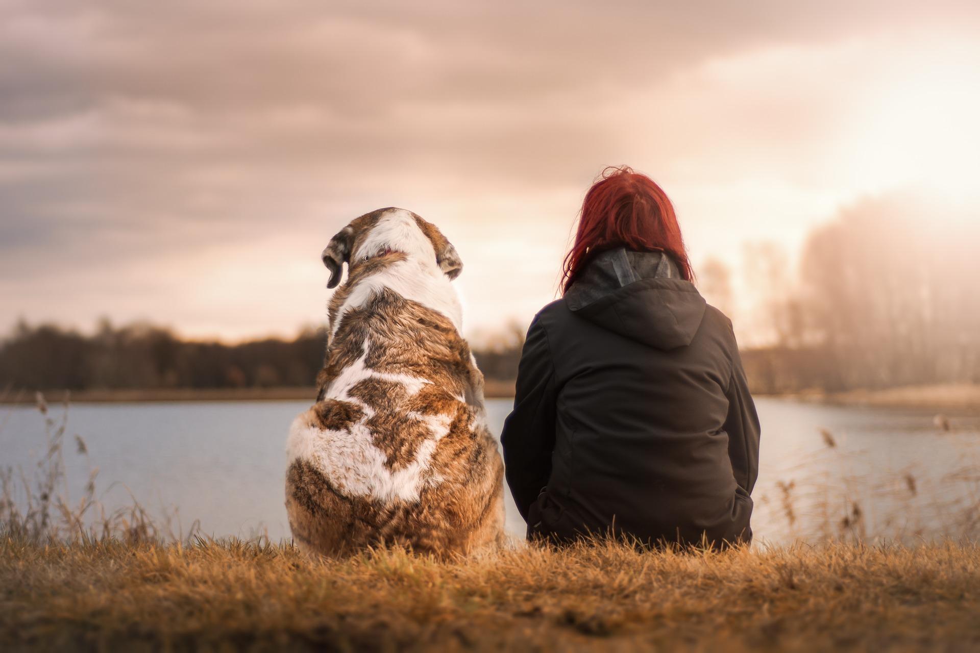 empatia-la importancia de las emociones